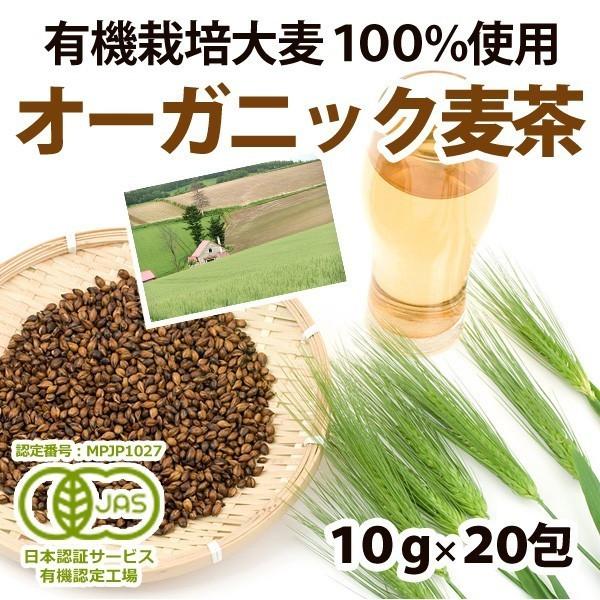 bakuchanhonpo_3005-1.jpg