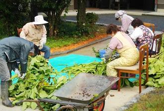 なた豆茶 平営農組合さま